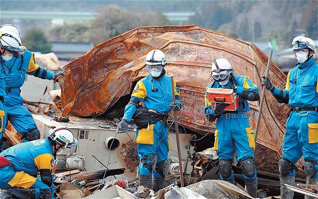 fukushima danni
