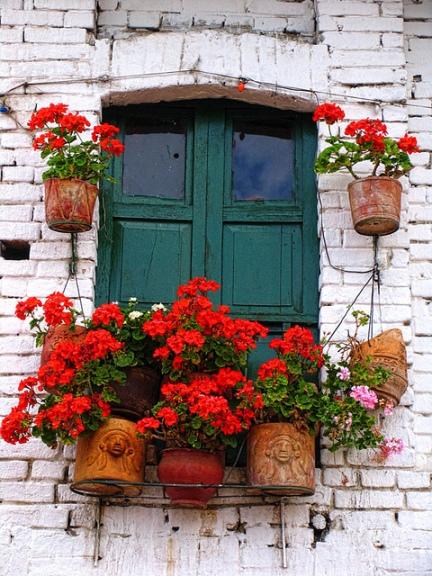 Togliamo i vasi sporgenti da finestre e balconi for Vasi per balcone