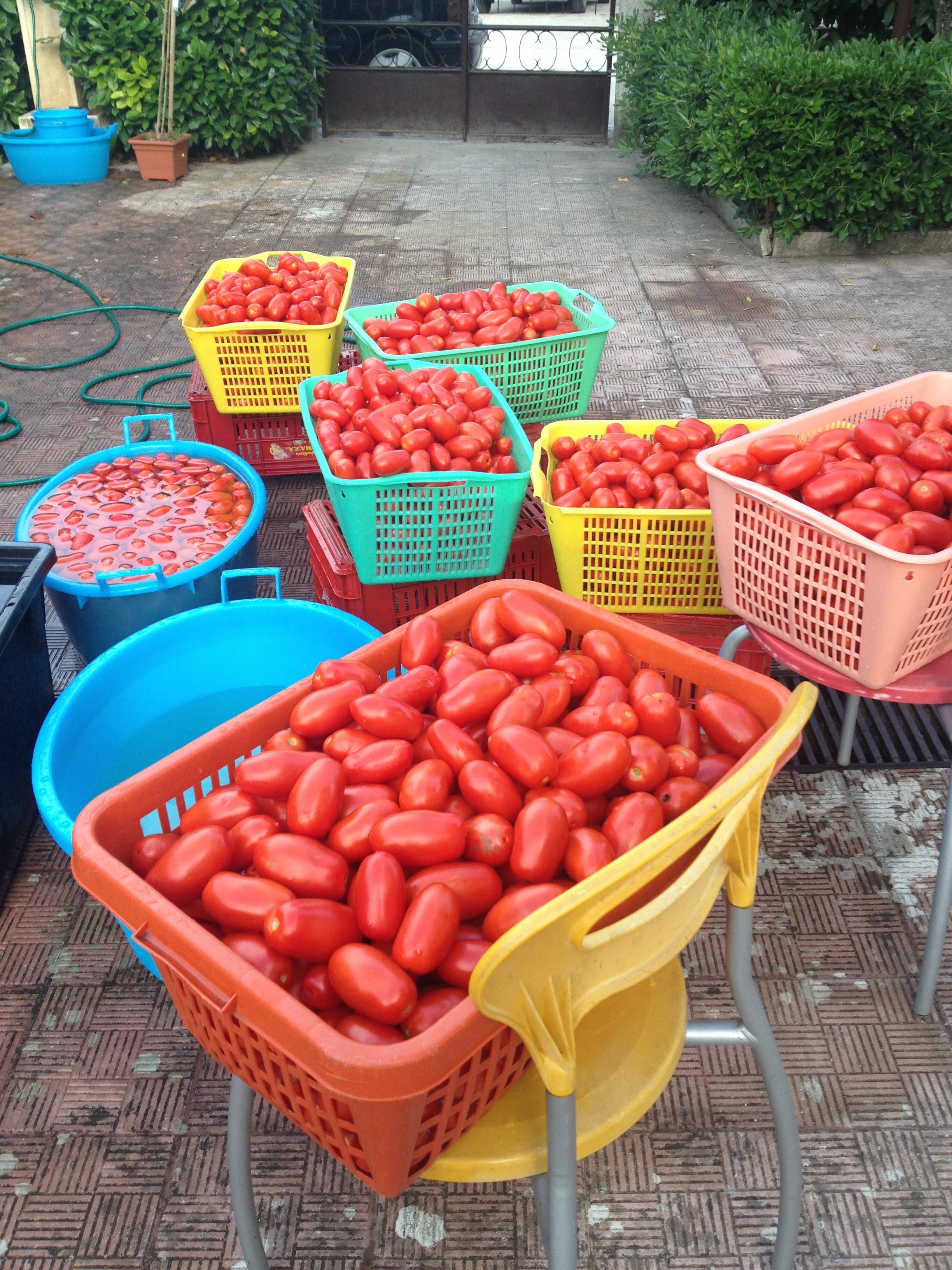 conserva di pomodoro casalinga
