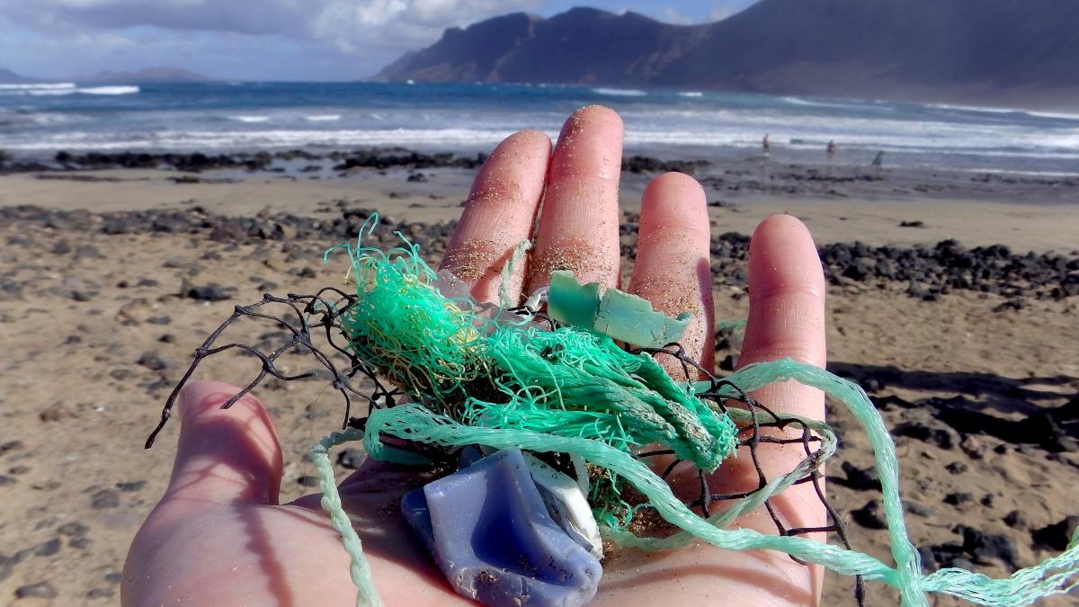 Bottiglie di plastica e non solo, ora su Whatsapp si possono segnalare i rifiuti inmare